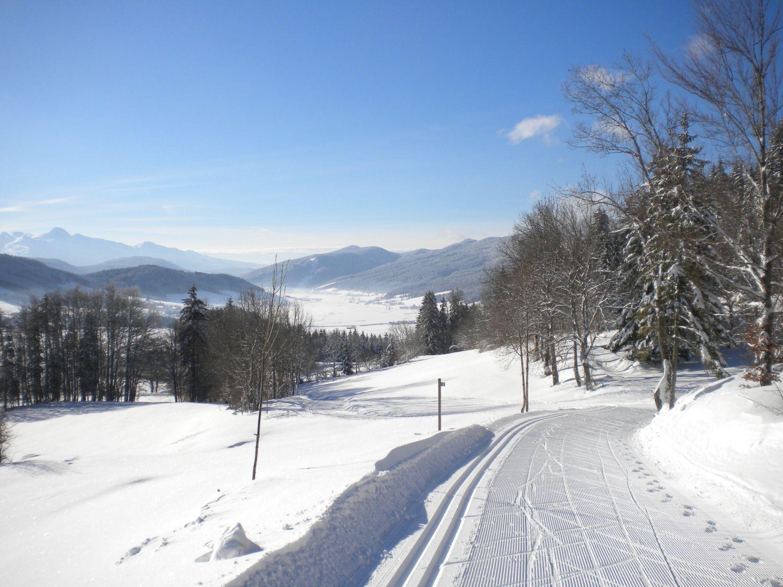 ski de fond au Banc de l'Ours